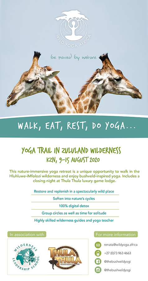 Promotion design to advertise a wilderness experience with yoga and hiking. Vertical design with green, blue and giraffes